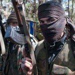 syrian rebel in turkish border (telegraph.co.uk/david rose)
