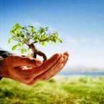 etika-islam-lingkungan